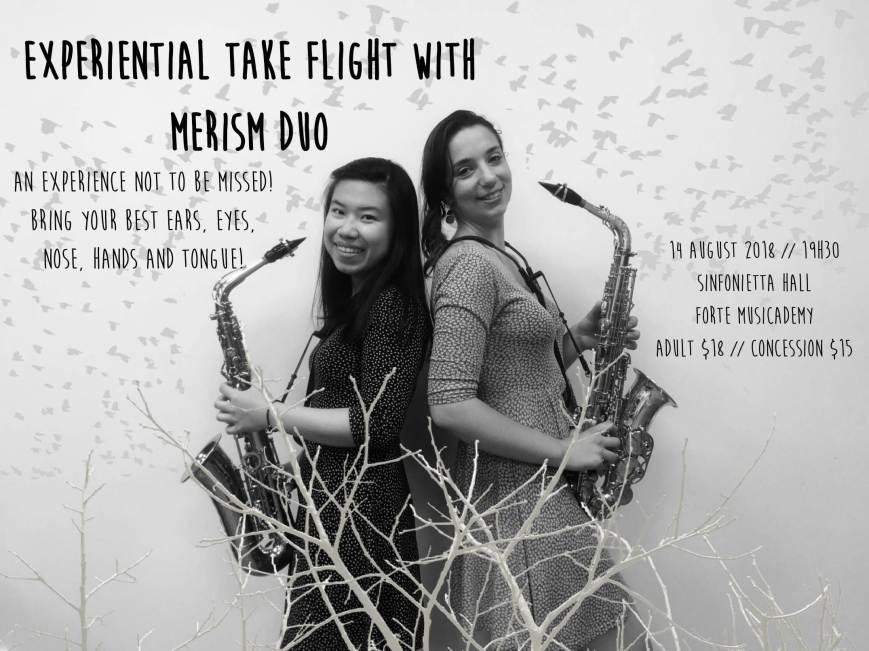 Merism Duo Experiential-1